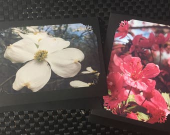 Spring Blooms Card Pair (2 cards)