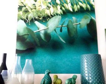 "Poster ""erumerus and eucalyptus"" floral photo, large size"