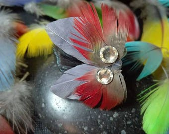 Grey feather ring and red parrot feather.