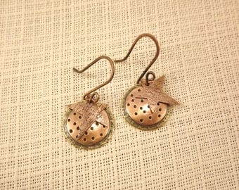 Copper and Brass Disc Earrings with a Star