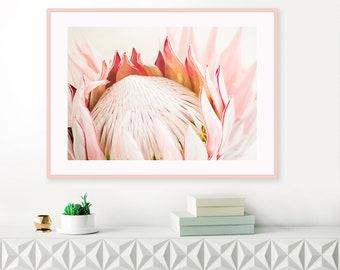 Protea Photography, Protea Wall Art, Girls Nursery Wall Art, Blush Pink Print, Fine Art Giclee Print, Romantic Wall Art, Above Bed Decor