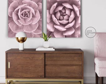 PINK CACTUS SUCCULENTS - 2 x Wall Art Print Poster Canvas - On Trend Scandi