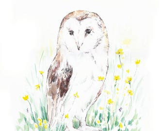 Field Owl, 9x12 giclée watercolor art print