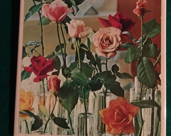 ceramic tile wall art flowers roses floral living room dining room den bathroom entry way approx 8 x 8