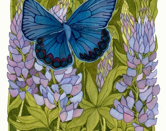 Protect The Karner Blue Butterfly