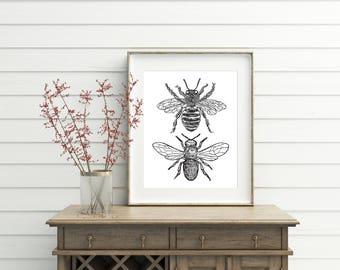 Bee Decor, printable, bee decorations, bee print, bee wall art, bee wall decor, art prints, wall art prints, vintage, wall art printable