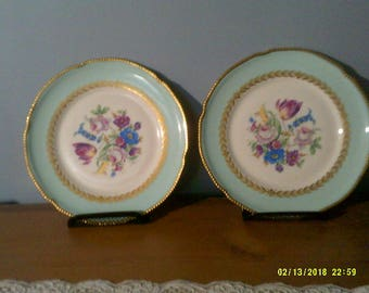 Rare Castelton USA China plates