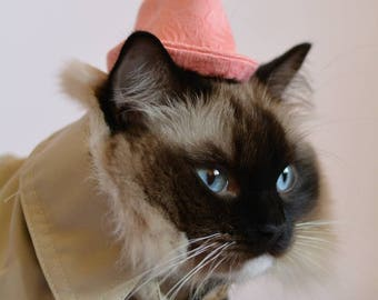 Hat for cat, pink hat for cat, robin hood style hat for cat, cute hat for cat, sweet hat for cst6, unique hat for cat