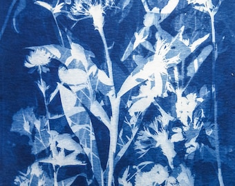 Original Unique Botanical Art Cyanotype Print of Garden Flowers