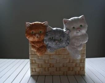 Planter - Pot - Abbott - kittens - basket