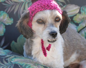 Puppy Hat, Dog Hat, Pom Pom Dog Hat, Pom Pom Dog Beanie,