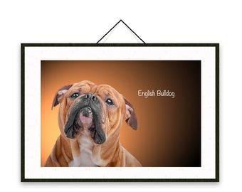 English Bulldog - Dog breed poster, wall sticker, nursery decor, dog print, nursery print, shabby print   Tropparoba - 100% made in Italy