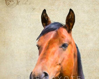 Horse Print, Barnyard Animal Prints, Nursery Art, Farm Animal Prints, Digital Download Printable File #bc147