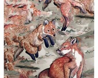 Foxy Loxy, Print, Art Print, Wall Print, Wall Art, Home Decor, Fox, Animal, Nature