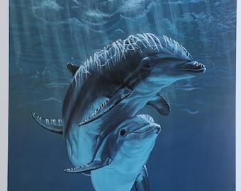 Dolphin Fine Art Print Entitled Synchrony