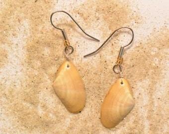 Brankigenn * beige and grey shell earrings