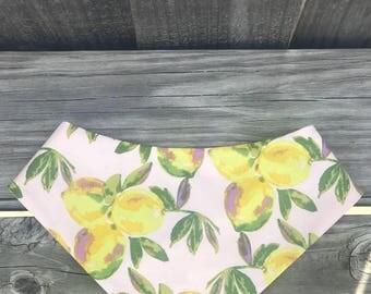 When Life Gives you Lemons pet bandana