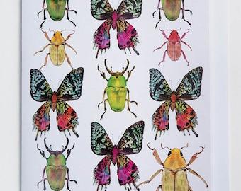 Beetles & Butterflies Greetings Card