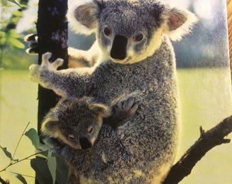 Strange Animals of Australia by Toni Eugene (National Geographic Society)