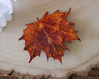 Maple Leaf Brooch Copper, Hair PIn, Sugar Maple Leaf Pin, Real Leaf, Hat Pin, Copper Leaf, BROOCH56