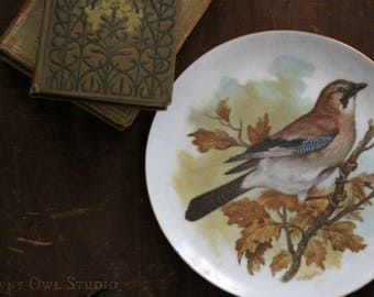 Autumn Bird Plate in Oak Tree, Afternoon Tea