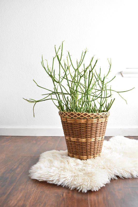striped 2 tone colored woven rattan bamboo basket planter