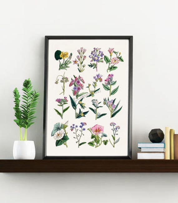 Wall art Wild flowers collection, Wild flowers in pink print, Giclee print wild flowers decor, Wild flower study, Home decor BFL215WA4