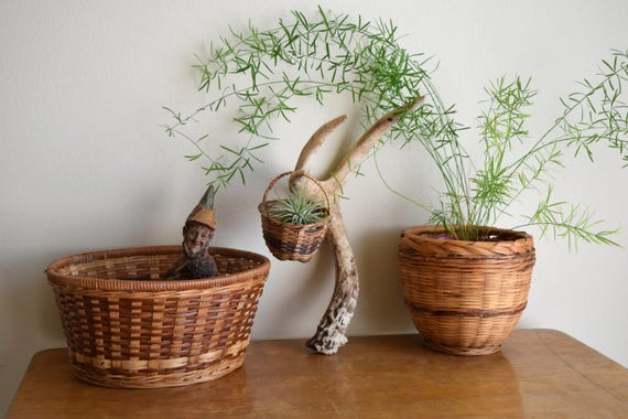 Set of (3) Vintage Basket Planters - Boho, Farmhouse, Natural, Ecletic