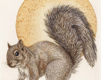 "Squirrel - Print of Original Art 5"" x 7"" watercolor and ink Giclee archival"