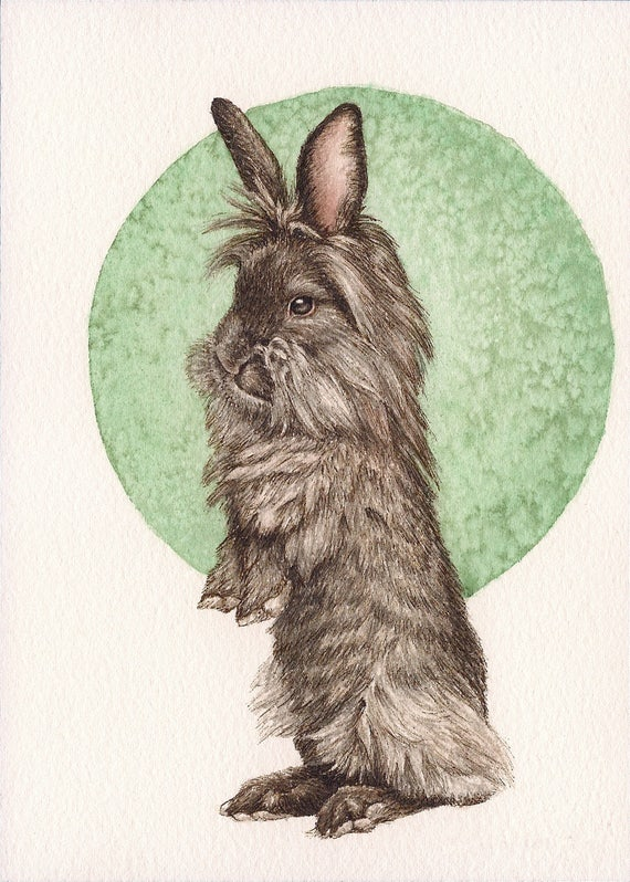 """Lionshead Rabbit - Print of Original Art 5"""" x 7"""" watercolor and ink Giclee archival"""