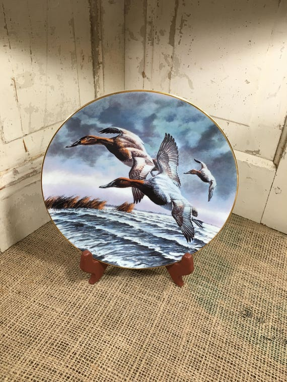 Vintage collectors plate Canvasbacks, representing the fourth issue in the federal duck stamp plate collection, duck collector, man gift