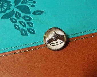 Intaglio Button Design Under Glass Equestrian Horse Button