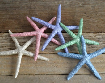 "Painted Starfish, ""Mermaid Dreams"" 3-4"" 