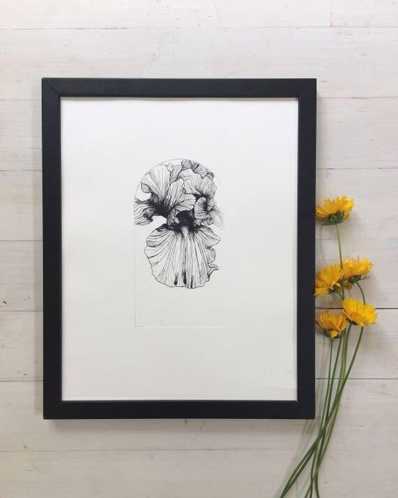 Iris flower, Flower etching, flower illustration, iris flower print, intaglio print, botanical art print, botanical illustration, Iris print