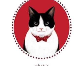 Custom Pet Portrait Cat Illustration Cat Print Cat Lover Gift Custom Pet Drawing Your Cat Cartoon Pet Memorial Print Cat Gift for Cat Lover