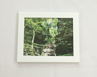 Forest Print, Woods Wall Art, Landscape Photography, 8x10 Print, 11x14 Print, 16x20 Print, Nature Print, Christmas Gift, Nature Wall Art