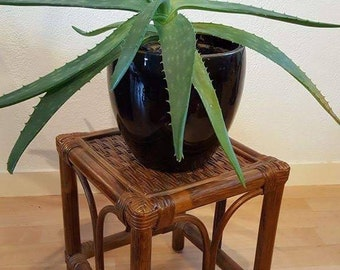 Vintage wood and rattan stool / plant stand / small side table