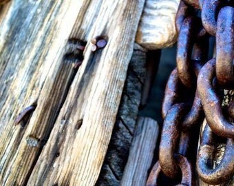 Lock and Chain on a Fence Photo Print