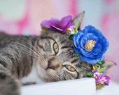 Flower Crown, Cat Flower Crown, Cat Headwear, Cat Accessory,Pet Accessory