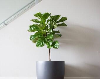 Matte Grey Planter | Pot | Indoor & Outdoor Modern Lightweight Hand Painted Planters | Large Planter | Minimalist Shape | Plant Pot