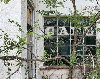 Abandoned Cafe Window Documentary Photo - Overgrown Roadside Cafe Window - Route 66 Photos from Liberty Images - Road Trip America Wall Art