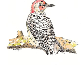 Woodpecker 2.  Matted Print from the Original Watercolor