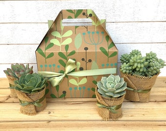 Christmas Succulent Gift Box-Garden in a Box-Gift for Gardeners-Christmas Gift-Gift for Her-Rustic Gift-Holiday Gift-Plant Gift-Green Thumb