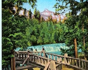 Vintage Montana Postcard - McDonald Falls, Glacier National Park (Unused)