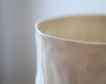 A porcelain jar 17-244