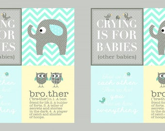 Brother Sister Panel Blocks Fabric Clothworks Ellen Crimi-Trent Big Brother Gender Reveal Panel Baby Nursery Fabric