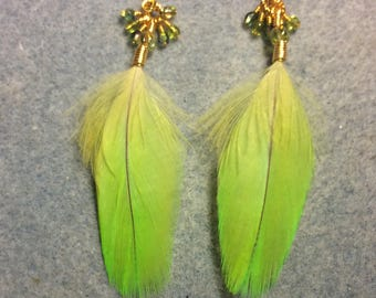 Bright lime green Amazon parrot feather earrings adorned with tiny dangling green Czech glass beads.