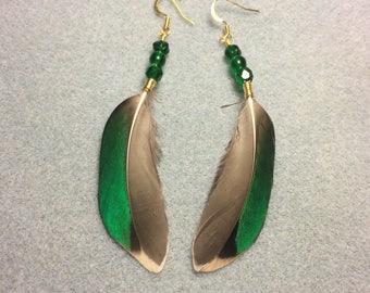 Irridescent green mallard duck feather earrings adorned with green Czech glass beads.