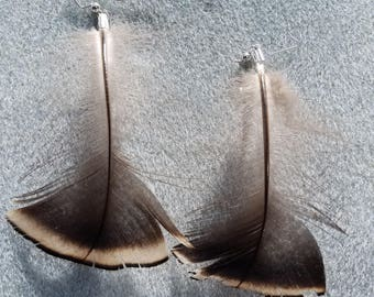 Turkey Feather Earrings