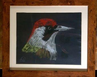 Framed Original Woodpecker Pastel Sketch